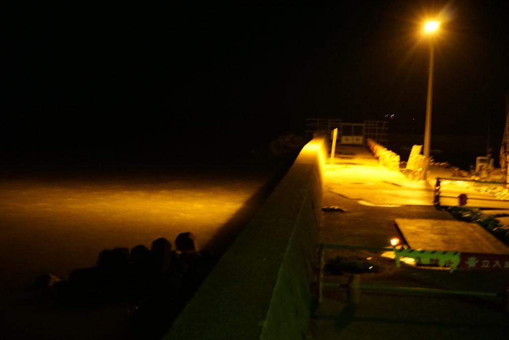 河口右岸の夜間の様子