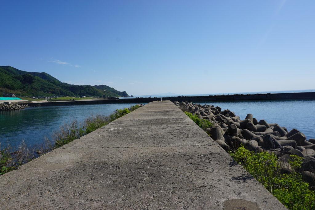 中央堤防の様子